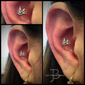 Piercings-Jay-Piercing-Haven-Body-Arts-Piercing-Tattoo-Northampton-Ma-01060 (32)