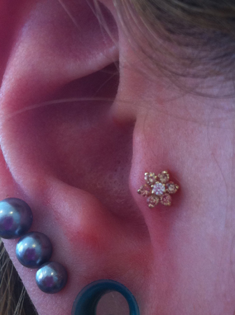 Tragus-Piercing-Haven-Body-Arts-Piercing-Tattoo-Northampton-Ma-01060