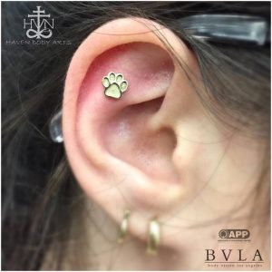 piercings-jay-piercing-haven-body-arts-piercing-tattoo-northampton-ma-01060-112