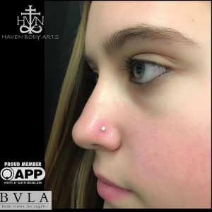 piercings-jay-piercing-haven-body-arts-piercing-tattoo-northampton-ma-01060-121
